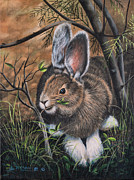Grass Painting Originals - Snowshoe Rabbit by Ricardo Chavez-Mendez
