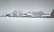 Matt Taylor - Snowy Barn And Pasture