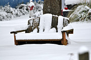 Snowed Trees Photo Prints - Snowy Bench Print by Sonja Dover
