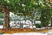 Snow Storm Prints Framed Prints - Snowy Day at the cemetery - Greensboro North Carolina Framed Print by Dan Carmichael