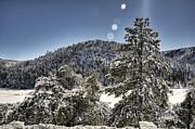 Saija  Lehtonen - Snowy Day