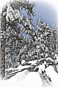 Payson Prints - Snowy Dreams  Print by Saija  Lehtonen