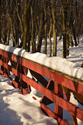 Snowy Footbridge Print by Joshua McCullough