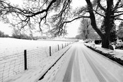 Fields Digital Art Posters - Snowy Lane Poster by Adrian Evans