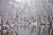 Wintery Digital Art Prints - Snowy Morning on Wissahickon Creek Print by Bill Cannon