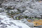 Sundance Prints - Snowy Mountain Stream Print by Douglas Barnard