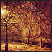 Snowy Night Photo Posters - Snowy night Poster by Betta Artusi