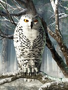 Daniel Eskridge - Snowy Owl