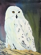 LeAnne Sowa - Snowy Owl