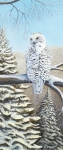 Snowy Painting Originals - Snowy Owl by Rick Huotari