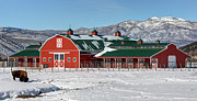 Ranch Prints - Snowy Red Mountain Barn with Buffalo - Utah Print by Gary Whitton