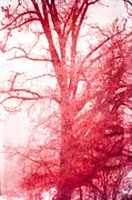 Suzanne Powers - Snowy Red Pink Tree...
