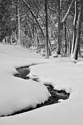 Jeka World Photography Posters - Snowy Stream Poster by Jeka World Photography