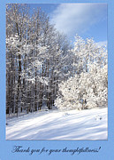 Photography By Govan; Vertical Format Prints - Snowy Thank You photocard1 Print by Andrew Govan Dantzler