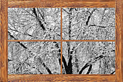 Room With A View Framed Prints - Snowy Tree Branches  Barn Wood Picture Window Frame View Framed Print by James Bo Insogna