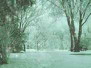 Mary Wolf - Snowy Winter Night