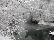 Snowy Trees Digital Art - Snowy Wissahickon Creek by Bill Cannon