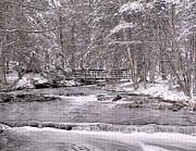 Nick Zelinsky - Snowy Woods and Stream