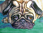 Soulful Eyes Paintings - Snug Pug by Louise Hallauer