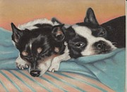 Boston Pastels - Snuggle Buddies by Pamela Humbargar