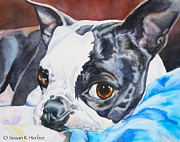 Black Eye Susan Paintings - Snuggle Bum by Susan Herber