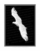 Courage Digital Art Metal Prints - Soaring - Isaiah Forty Metal Print by Cliff Hawley