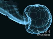 Eurelios - Soccer Ball X-ray