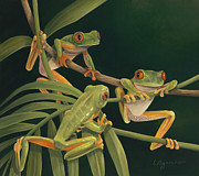 Rainforest Paintings - Social Climbers by Laura Regan