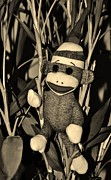 Ape Mixed Media - SOCK MONKEY in HIS NATURAL HABITAT in SEPIA by Rob Hans
