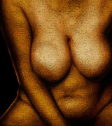 Nudes Digital Art - Soft Bawdy V19 by James Barnes