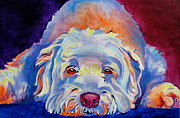 Dawgart Paintings - Soft Coated Wheaten Terrier - Guinness by Alicia VanNoy Call