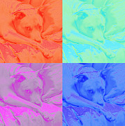 Veterinary Prints - Soft Colors of a Pit Bull Print by Renee Trenholm