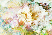 Sandy Moulder - Soft Florals