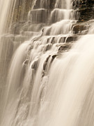 Brandywine Prints - Soft Flow Print by Shannon Workman