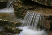 Swallow Falls State Park Art - Soft Landing by Tammy and Dale Anderson