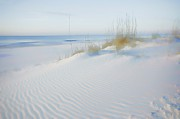 Alabama Digital Art Framed Prints - Soft Sandy Beach Framed Print by Michael Thomas
