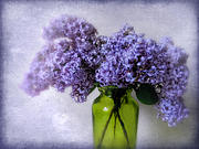 Lilac Digital Art Prints - Soft Spoken Print by Jessica Jenney