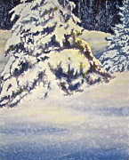 Snow Covered Pine Trees Paintings - Softly Comes the Morning by Carolyn Rosenberger