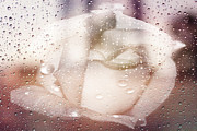 Folde Prints - Softly in the Rain Print by Judy Hall-Folde