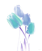 Blue Florals Prints - Softness of  Blue and Teal Tulip Flowers Print by Jennie Marie Schell
