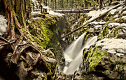 Wooded Park Framed Prints - Sol Duc Falls Framed Print by Heather Applegate