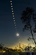 Observer Photo Metal Prints - Solar Eclipse Composite, Queensland Metal Print by Philip Hart