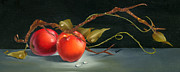 Oils Paintings - Solitary Apples by Doreta Y Boyd