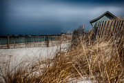 Sand Fences Art - Solitude on the Cape by Jeff Folger