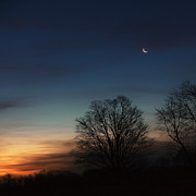 Crescent Moon Photos - Solstice Moon Square by Bill  Wakeley