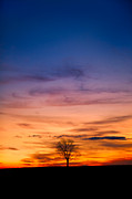 Rural Landscapes Photos - Solstice Sunrise by Bill  Wakeley