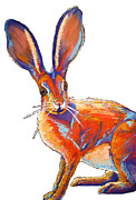 Whiskers Pastels Metal Prints - Some Bunnie Metal Print by Holly Wright