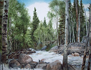 Park Scene Paintings - Some where at the top of Alberta Falls  by Denny Dowdy