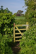 Somerset Countryside Gate Uk Print by Rene Triay Photography
