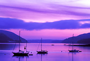 Somes Sound Prints - Somes Sound at Dawn Print by Jim Block